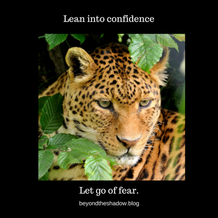 Lean into confidence